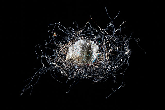 Liss FENWICK, Found bird's nest of plastic netting and other unnatural fibres, central Queensland, 2016, pigment print on platine fibre rag. Courtesy the artist.