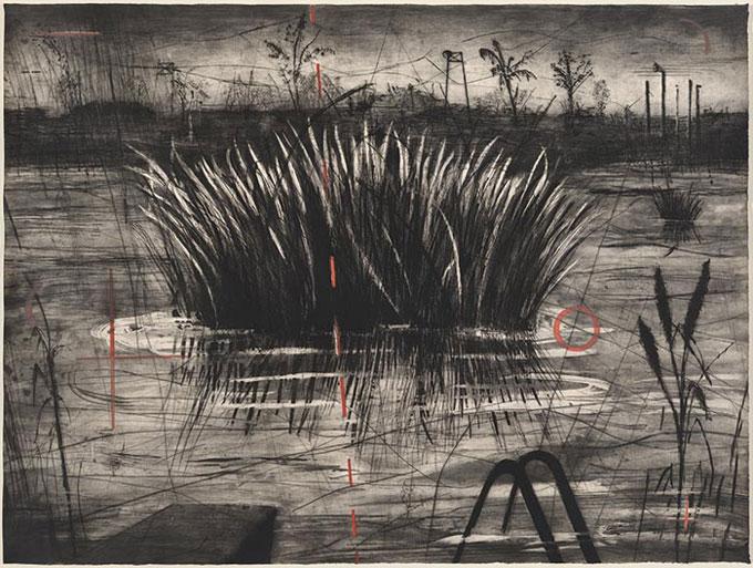 William KENTRIDGE 'Reeds' 1996 | intaglio | National Gallery of Australia, Canberra | The Poynton Bequest, 2013