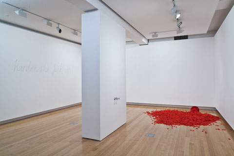 Installation view of 'The sum of all things?' | Photo: Richard Stringer